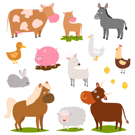 Farm animals cartoon characters family rural organic harvest farming domestic agriculture thoroughbred vector illustration.