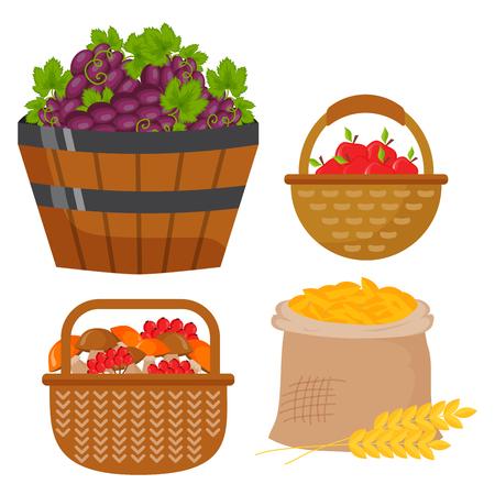Vector le icone piane del raccolto che raccolgono l'attrezzatura per agricoltura e orticoltura, frutti naturali sani e attrezzi per bricolage Archivio Fotografico - 87062361