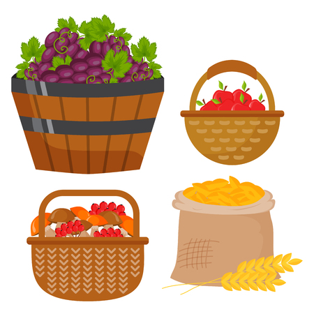 Vectoroogst vlakke pictogrammen die materiaal voor landbouw en tuinbouw, gezonde natuurlijke vruchten en handhulpmiddelen oogsten