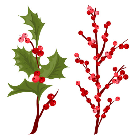 A Christmas decorative leaves and branches with winter red berries vector illustration. Ilustrace