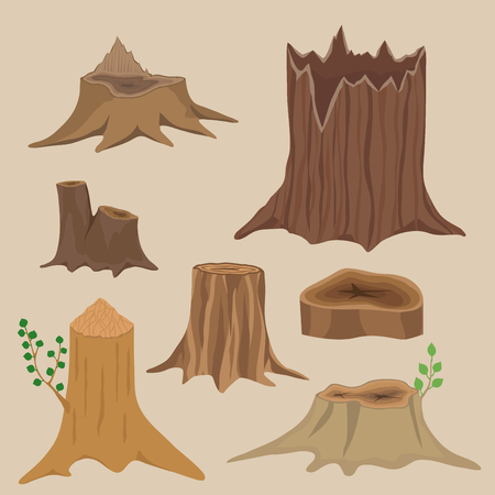 rings on a tree cut: Natural forest stack pile rough bark pattern abstract construction.