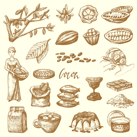 Vector cocoa products handdrawn sketch doodle food chocolate cacao production sweet illustration.