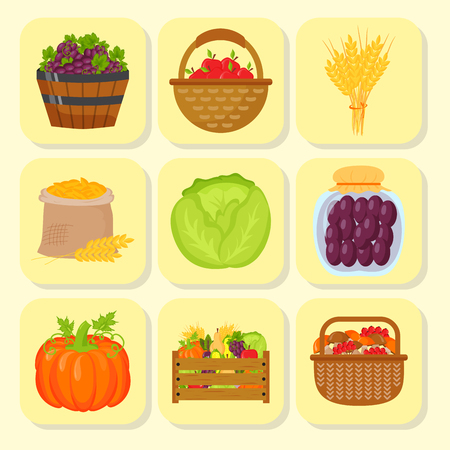 Vector harvest flat icons harvesting equipment for agriculture and horticulture, healthy natural fruits and hand tools Stock Vector - 87963351