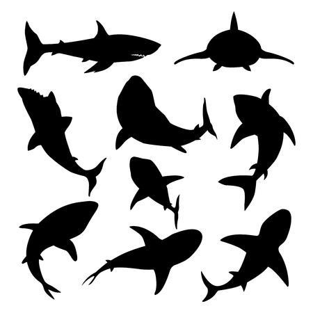 Vector illustration toothy swimming angry shark animal sea fish character underwater cute marine wildlife mascot black silhouette.