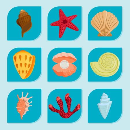 Sea shells marine cartoon vector illustration