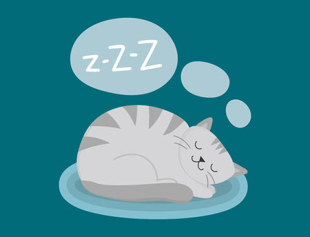 Portrait cat animal sleep pet cute kitten purebred feline kitty domestic fur adorable mammal character vector illustration.
