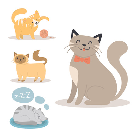 Different animal activities illustration.
