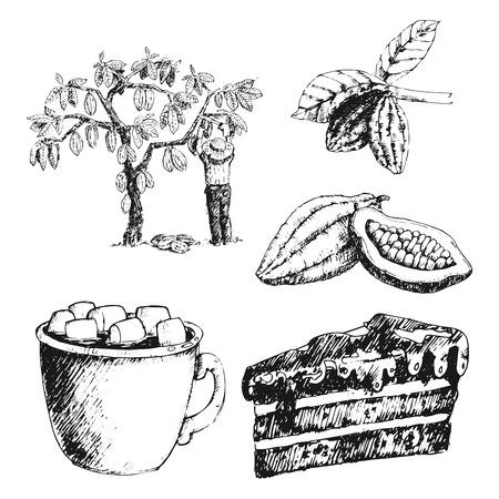 벡터 코코아 제품 손으로 그린 스케치 낙서 음식 초콜릿 달콤한 그림.