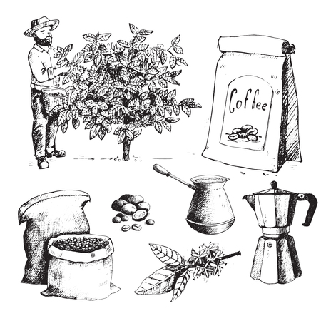 Coffee production hand drawn farmer picking beans on tree and vintage drawing drink retro cafe collection sketch dessert vector illustration. Иллюстрация