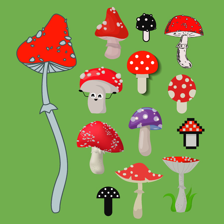 Style of amanita mushrooms dangerous set vector poisonous season toxic fungus food illustration.