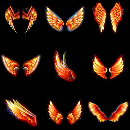 Fire wings phoenix vector on black background