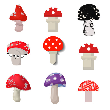 Vector amanita mushrooms dangerous set poisonous season toxic fungus food illustration. Фото со стока - 91266781