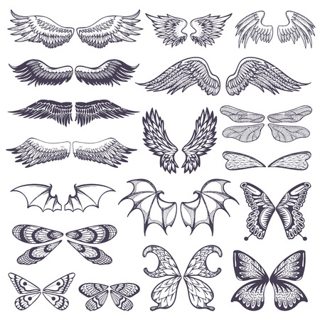 illustration of wings for tattoo set isolated on white background