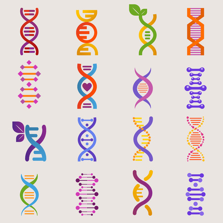 DNA vector genetic sign with genome or gene in biology medical research and DNAse or DNAbinding structure illustration set isolated on white background