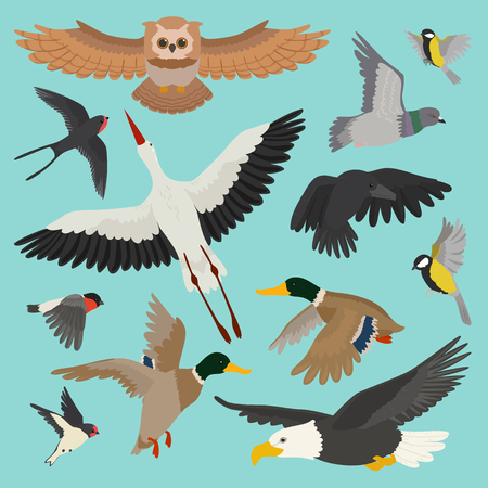 Birds vector isolated on background Vectores