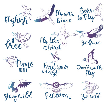 Bird lettering vector text fly high and flying birdie swallow with feather wings illustration set of owl freedom print for typography with handwritten letters isolated on white background.
