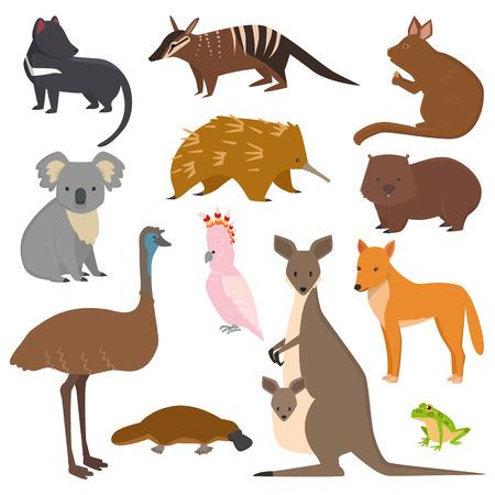 Australian wild animals vector set
