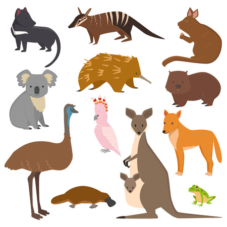 Australian wild animals vector set