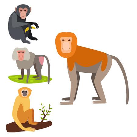 Monkey character vector illustration set.