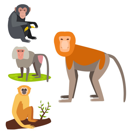 Monkey character vector illustration set.