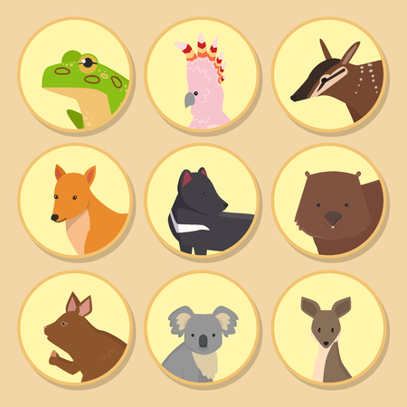 Australia wild animals cartoon popular nature characters like koala bear and kangaroo flat style mammal collection vector illustration. Illustration