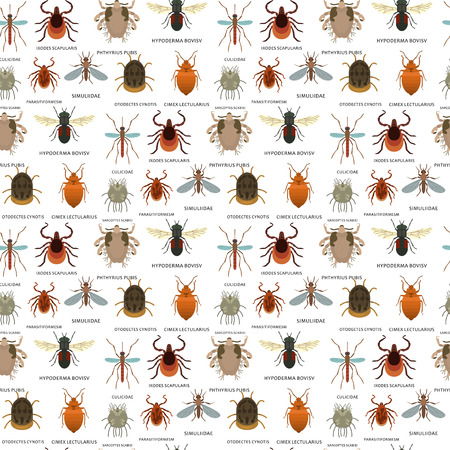 Human skin parasites vector housing pests insects disease parasitic bug macro animal bite dangerous infection medicine pest seamless pattern background illustration.