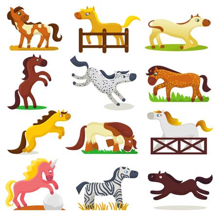 조랑말 얼룩말 문자 배경에 고립 된 말 사육 또는 아이 승마와 말 또는 말 종마 그림 유치 한 동물적 소름 끼치는 말의 만화 말 벡터 귀여운 동물