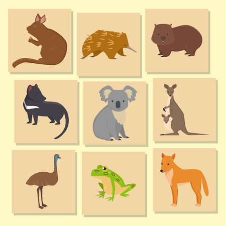Australia wild animals card cartoon popular nature characters flat style and australian mammal aussie native forest collection vector illustration. Natural little young portrait.