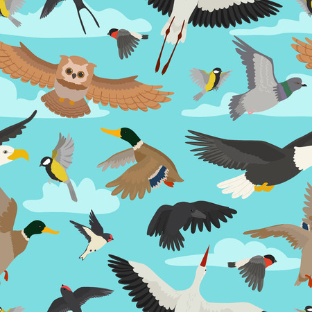 Bird vector cartoon flying birdie owl dove and duck with feather wings illustration set bullfinch stork or swallow for birdfancier seamless pattern background. Illustration