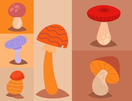 Mushrooms fungus agaric toadstool different art style design fungi vector illustration red hat Illustration