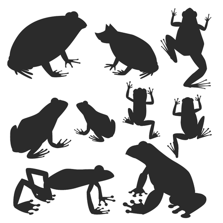 Frog vector silhouette cartoon tropical wildlife animal green froggy nature funny illustration toxic toad amphibian.