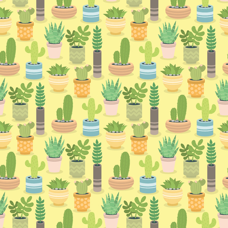 Cactus green plant cactaceous home nature cacti vector illustration of tree with flower seamless pattern background