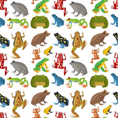 Kikker vector cartoon tropische dieren in het wild dier groene froggy natuur grappige illustratie giftige pad amfibie naadloze patroon achtergrond. Vector Illustratie