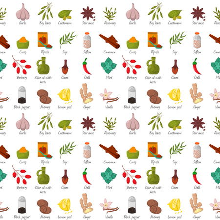 Spices condiments and herbs decorative elements and icons. Seeds fruit flower buds leaves blends and roots of seasoning food plants. Healthy organic vegetable. Illustration