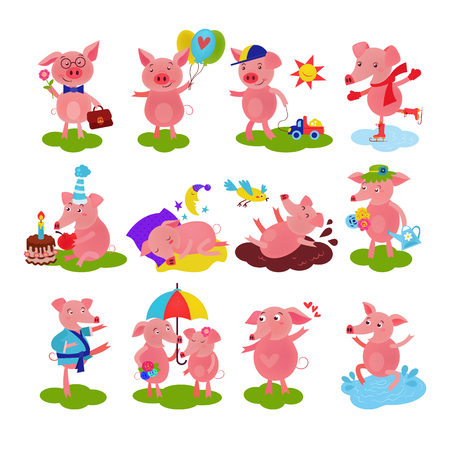 Cartoon pig vector piglet or piggy character on birthday and pink piggy-wiggy playing in puddle illustration piggish set of piggery couple and pigling baby isolated on white background.