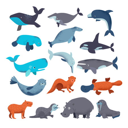 Sea mammal vector water animal character dolphin walrus and whale in sealife or ocean illustration marine set of seal or hippo illustration set isolated on white background.