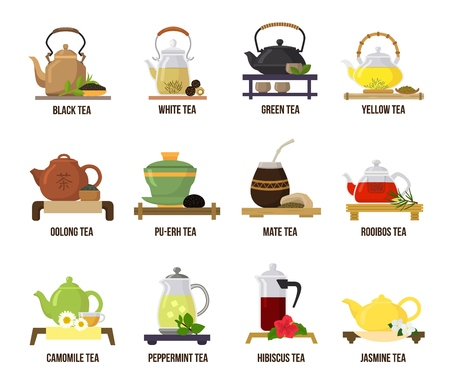 Tea vector green or black-tea in teapot illustration drinking set of jasmine and rooibos fruity drinks on teatime in cafe isolated on white background.