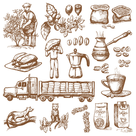 Coffee production vector plantation farmer picking coffeine beans on tree and vintage drawing drink retro cafe collection sketch coffeebean dessert illustration. Restaurant espresso coffee hot natural Illustration