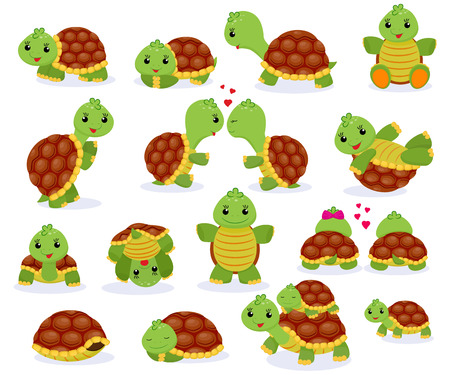 Turtle vector cartoon seaturtle character swimming in sea and playing tortoise in tortoise illustration set of reptile hiding in turtle isolated on white background