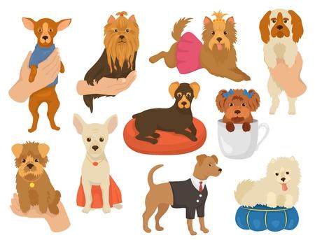 Petit chien vecteur un petit chien animal de compagnie caractère mignon chien-collier animal et jeune chiot domestique à la main illustration doggish ensemble de race canine yorkshire chihuahua ami isolé sur fond blanc