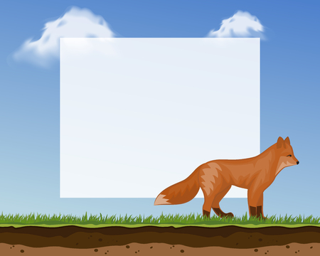 Cute fox frame for photos and pictures banner vector illustration for children s goods. Cute baby background with funny animal walking on green grass. Blu sky with clouds. Illusztráció