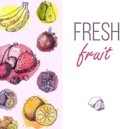 Fresh fruits drawing menu template. Hand drawn vintage vector frame. Summer fruit set of berries, banana, pears, orange, grapes in colored splashes.