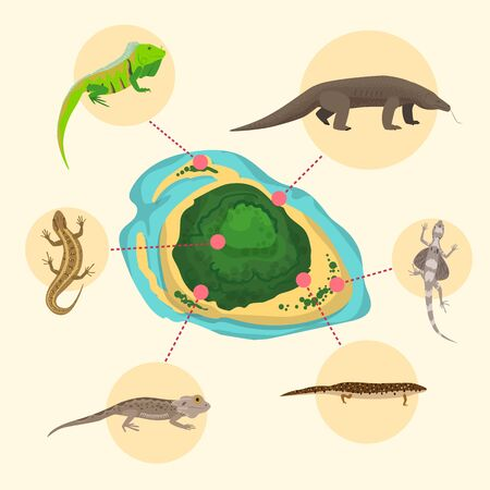 Komodo dragon, American Sand lizard, exotic reptiles monitor on exotic island. Wild animals lacertian in nature. Vector illustration for book, save nature poster or pet store, zoo.