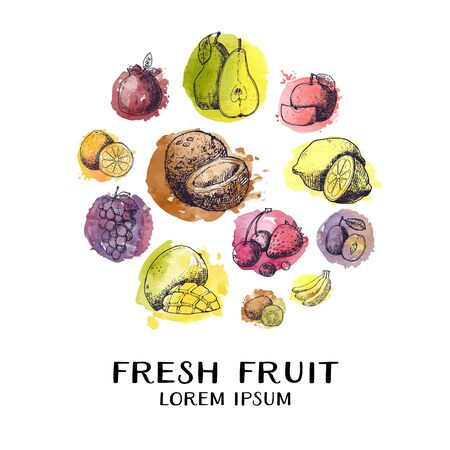 Vintage Ink hand drawn collection of fresh fruits in circle sketch for cards. Vector illustration of highly detailed fruits in in watercolor stylized splashes. Çizim