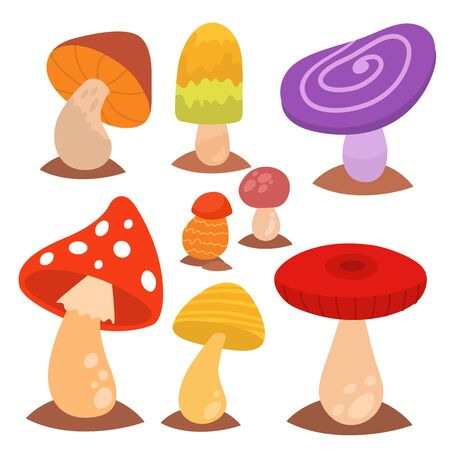 Mushrooms fungus agaric toadstool different art style design fungi illustration red hat