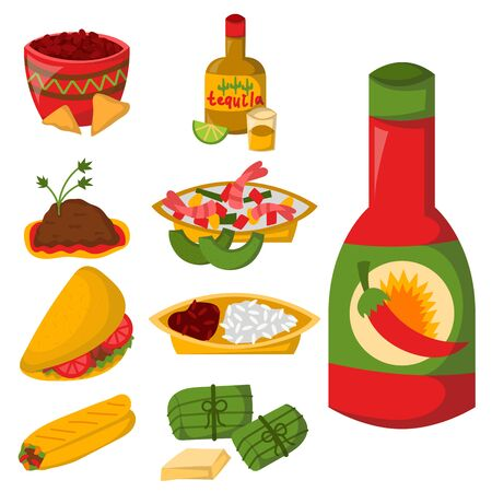 Mexican traditional food with meat avocado tequila corn spicy pepper salsa lunch sauce cuisine illustration