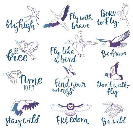 Bird lettering text fly high and flying birdie swallow with feather wings illustration set of owl freedom print for typography with handwritten letters isolated on white background Фото со стока