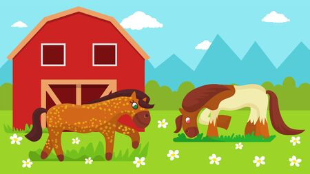 Two cute cartoon horses walking outdoor and eating grass on farm pasture meadow with flowers near stable vector illustration flat style. Horse breeding animal husbandry.