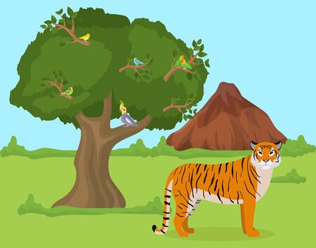 Tiger outdoors in nature habitat vector illustration. Wild animal tiger predator stands on grass in wooded area. Birds parrots sitting on tree. Mountain rocks in background.