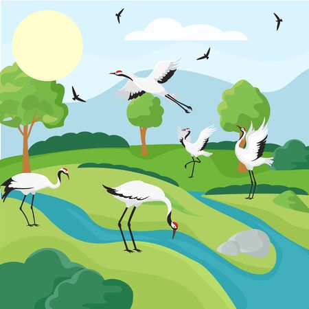 Cranes bird flock in wildlife vector illustration hand drawn. Natural scenery wallpaper background with japanese red crowned cranes. Landscape with grassland, water, mountain, and trees.